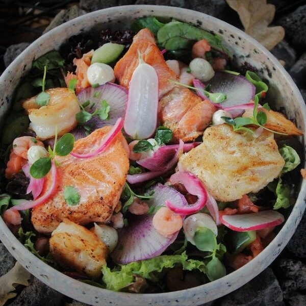 Fish or Oyster Salad